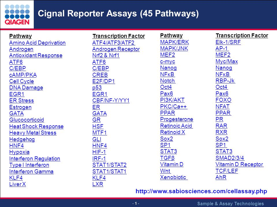 Cignal Reporter Assays (45 Pathways)