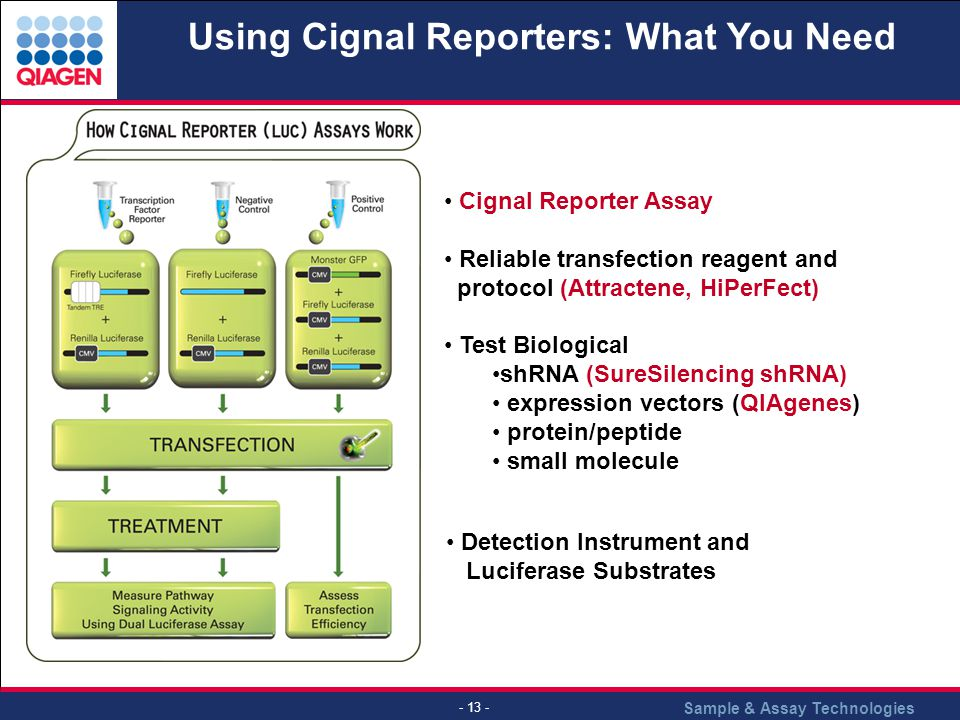 Using Cignal Reporters: What You Need