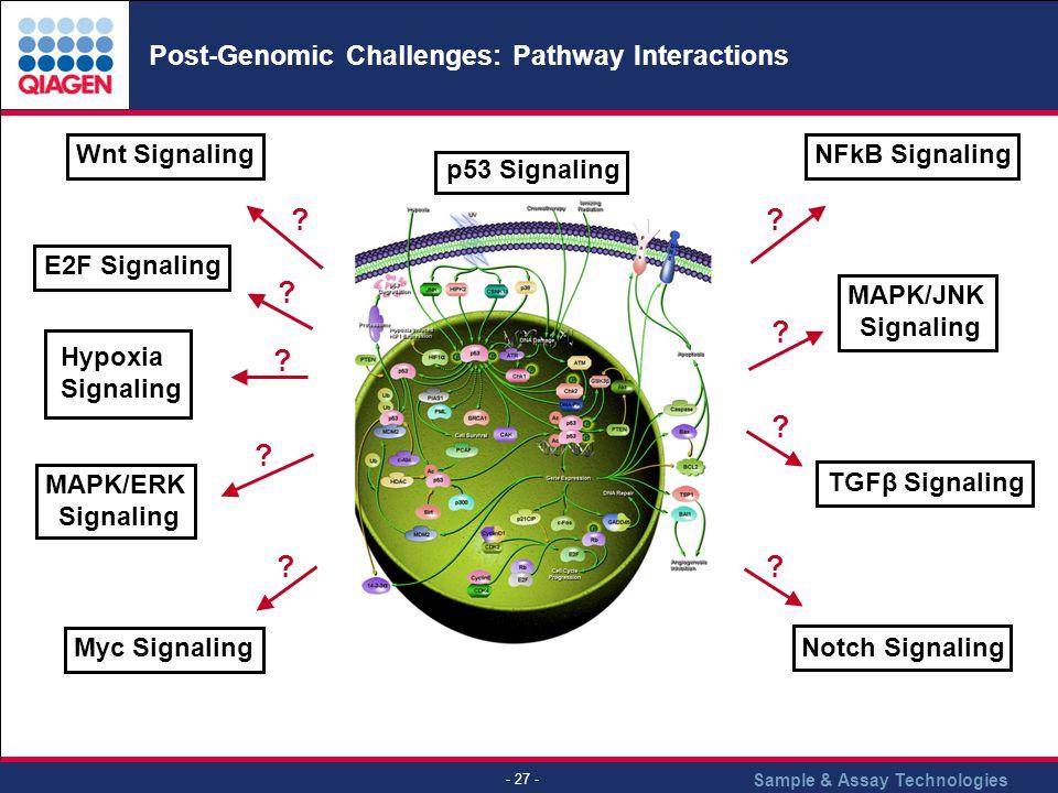 Post-Genomic Challenges: Pathway Interactions