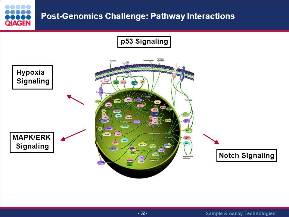Post-Genomics Challenge: Pathway Interactions