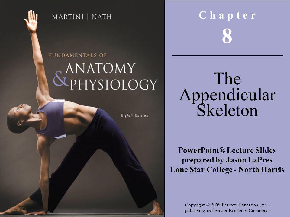 8 The Appendicular Skeleton C h a p t e r