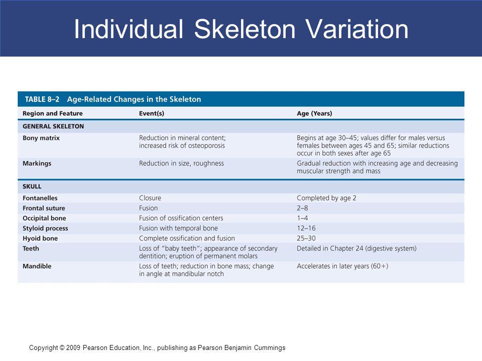 Individual Skeleton Variation