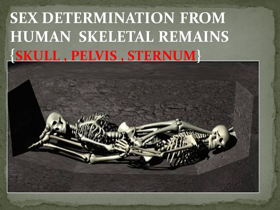 SEX DETERMINATION FROM HUMAN SKELETAL REMAINS {SKULL , PELVIS , STERNUM}