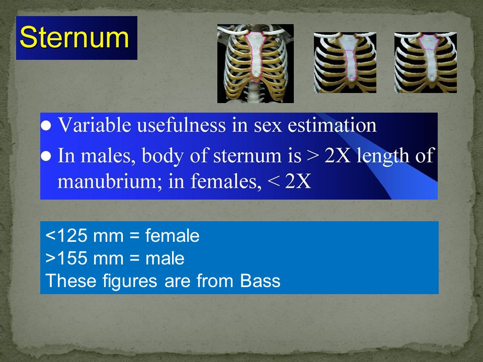 <125 mm = female >155 mm = male These figures are from Bass