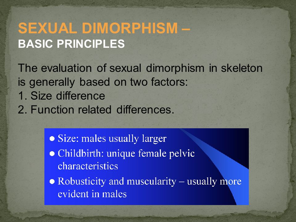 SEXUAL DIMORPHISM – BASIC PRINCIPLES
