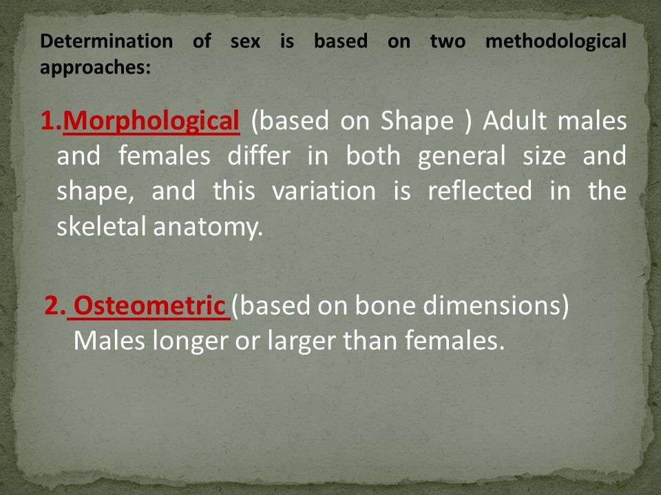 Males longer or larger than females.
