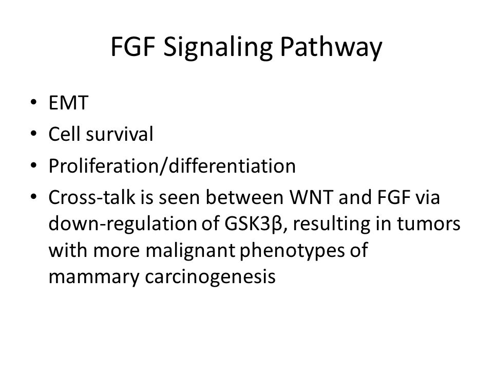 FGF Signaling Pathway EMT Cell survival Proliferation/differentiation