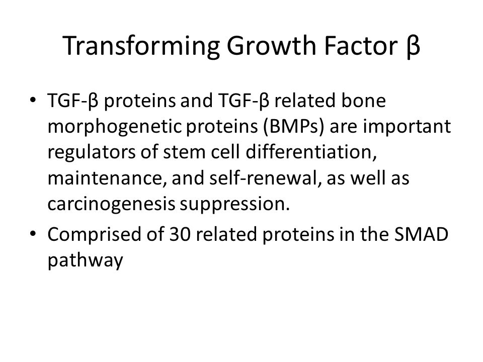 Transforming Growth Factor β