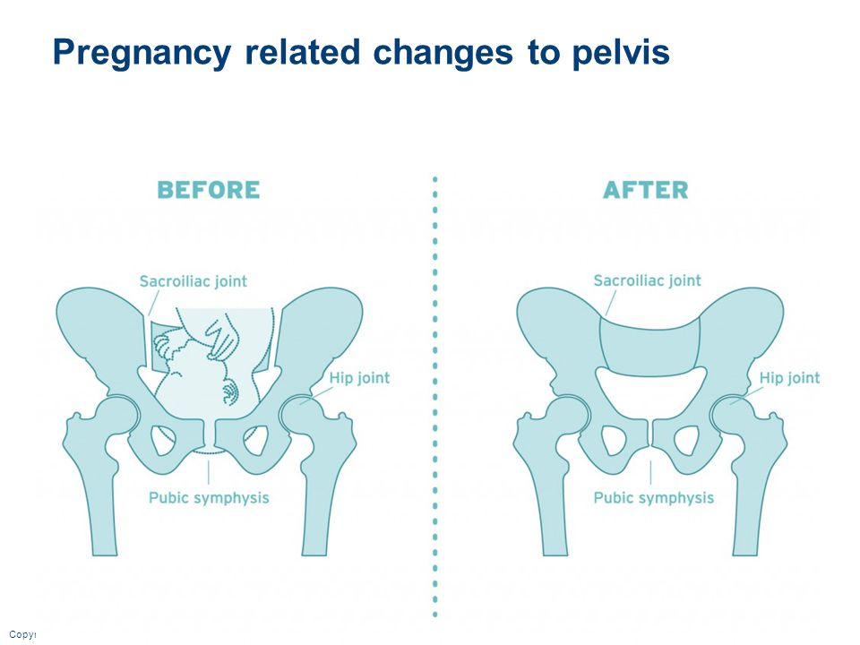 Pregnancy related changes to pelvis