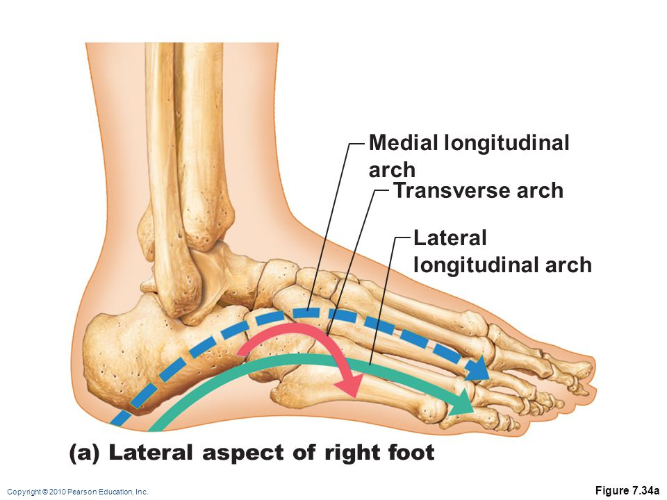 (a) Lateral aspect of right foot