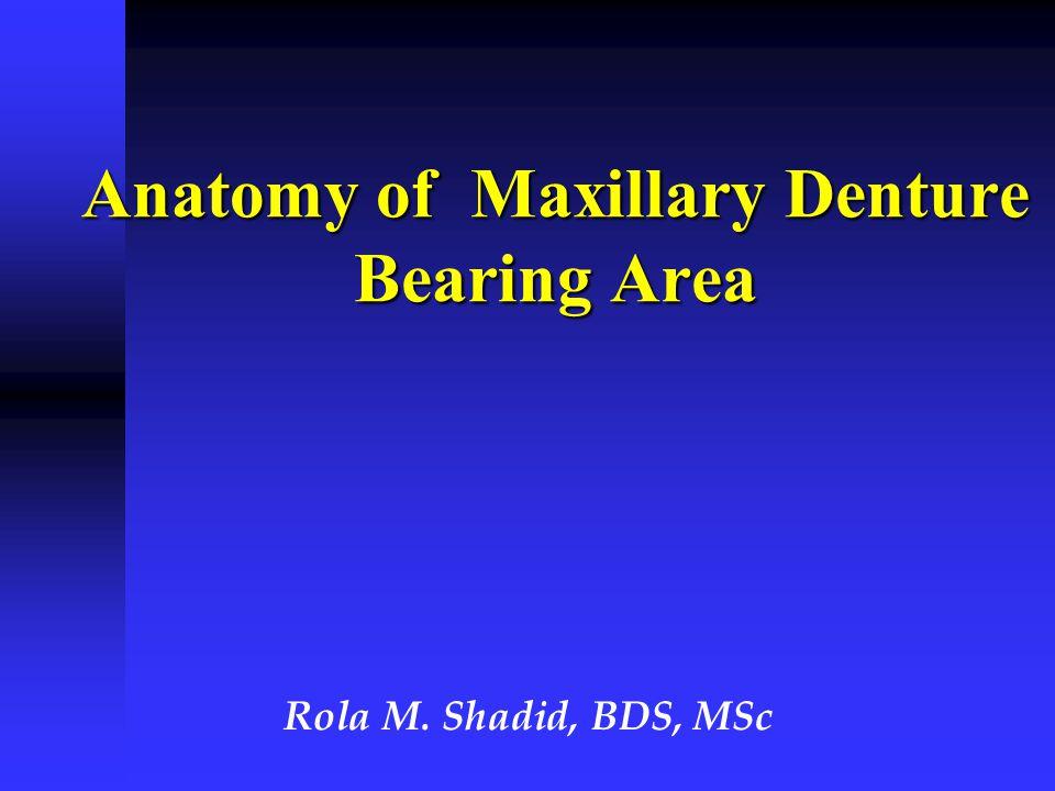 Anatomy of Maxillary Denture Bearing Area