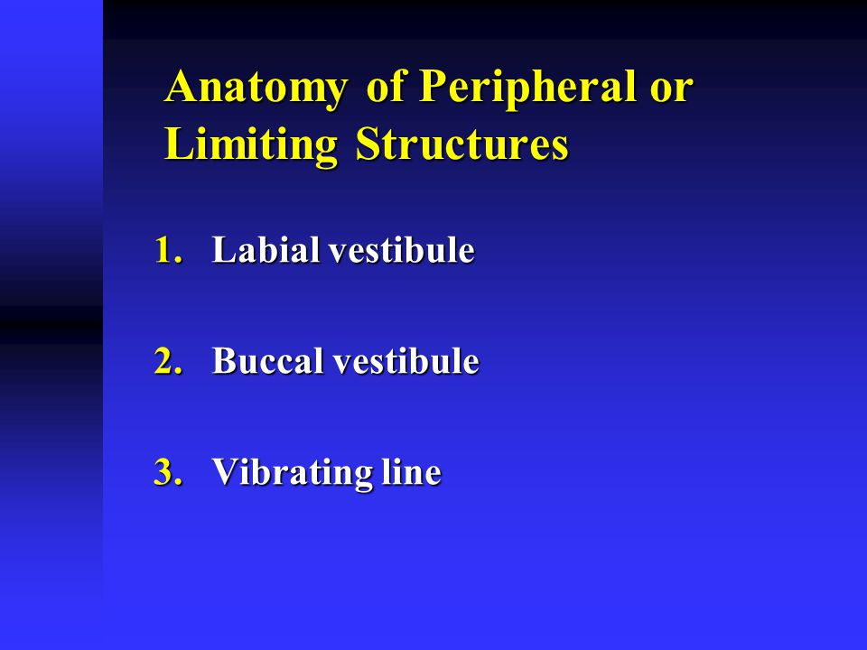 Anatomy of Peripheral or Limiting Structures