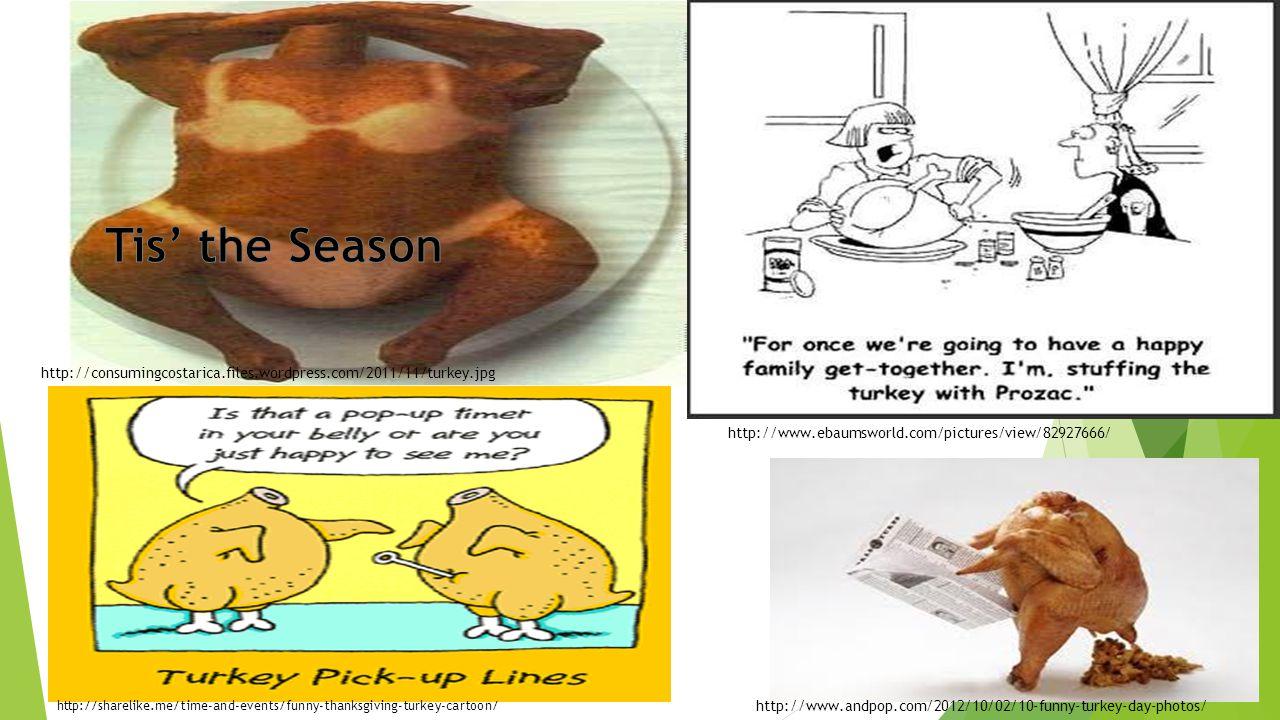 Tis' the Season http://consumingcostarica.files.wordpress.com/2011/11/turkey.jpg. http://www.ebaumsworld.com/pictures/view/82927666/