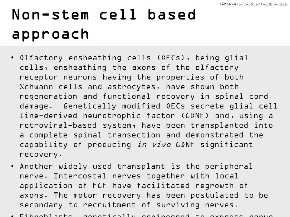 Non-stem cell based approach