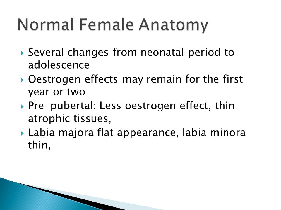 Normal Female Anatomy Several changes from neonatal period to adolescence. Oestrogen effects may remain for the first year or two.