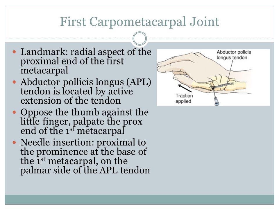 First Carpometacarpal Joint