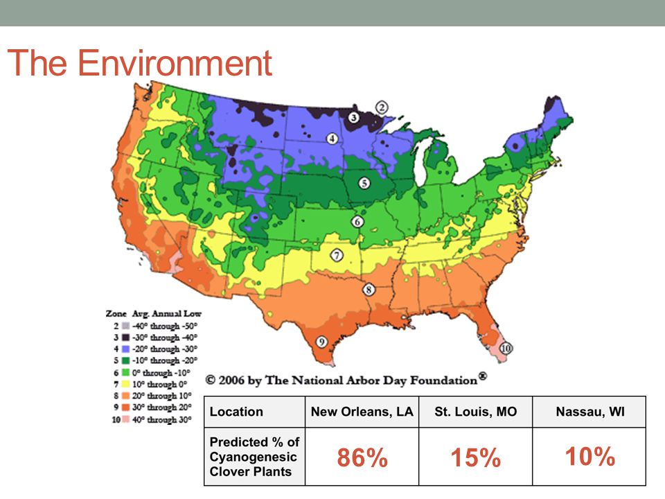 The Environment 86% 15% 10%