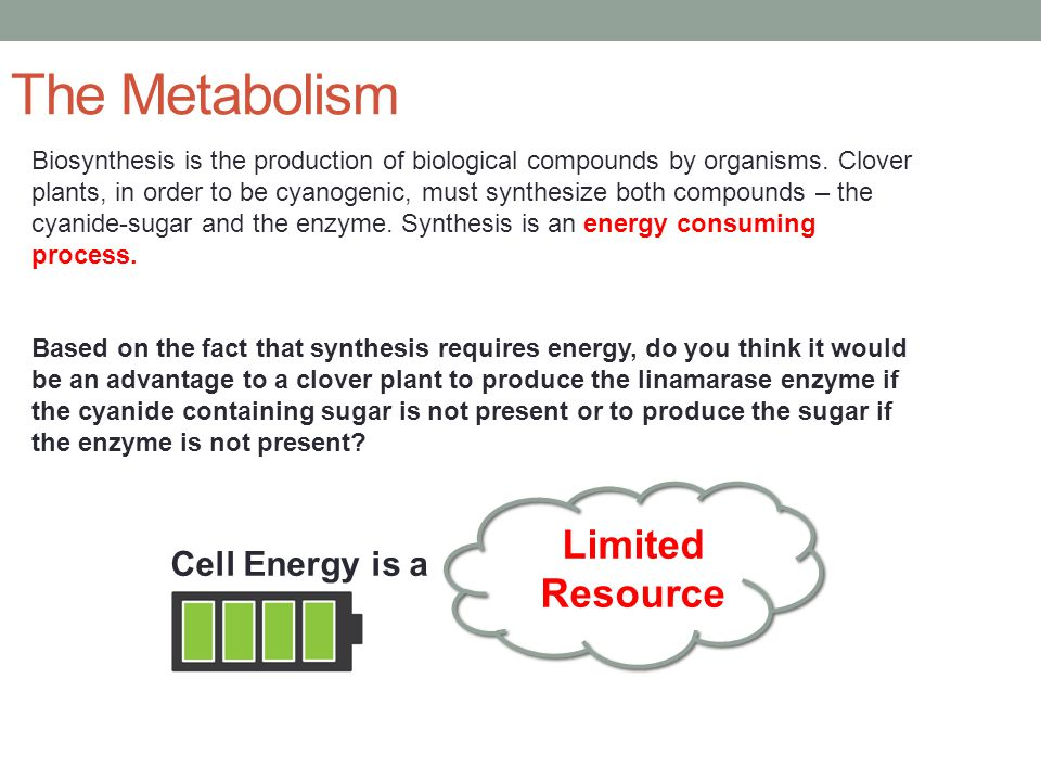 The Metabolism Limited Resource Cell Energy is a