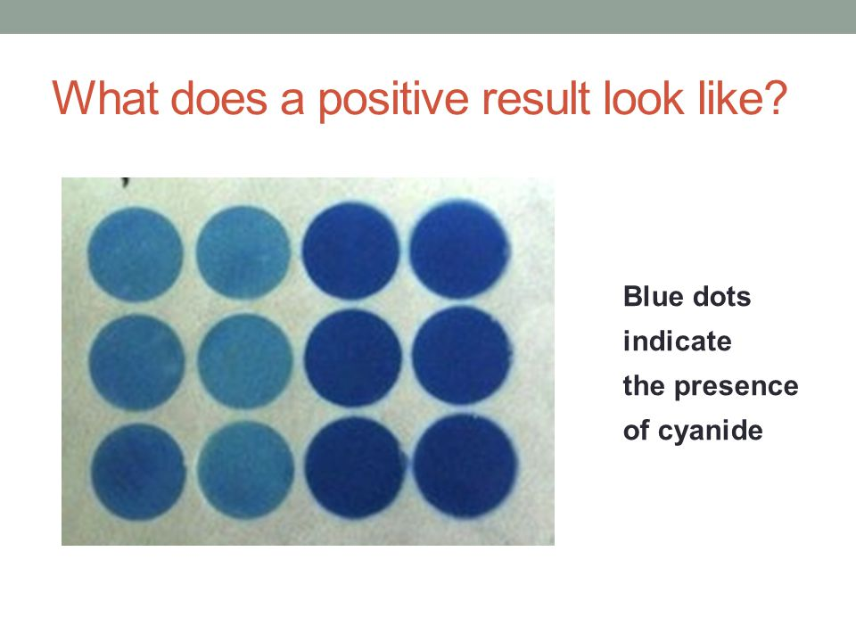 What does a positive result look like