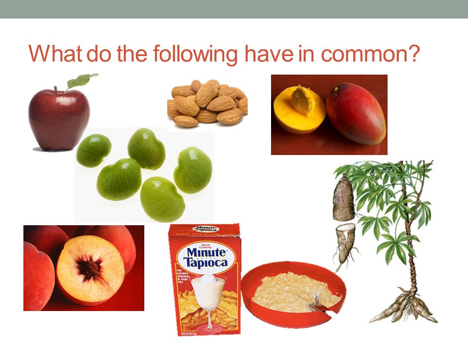 What do the following have in common