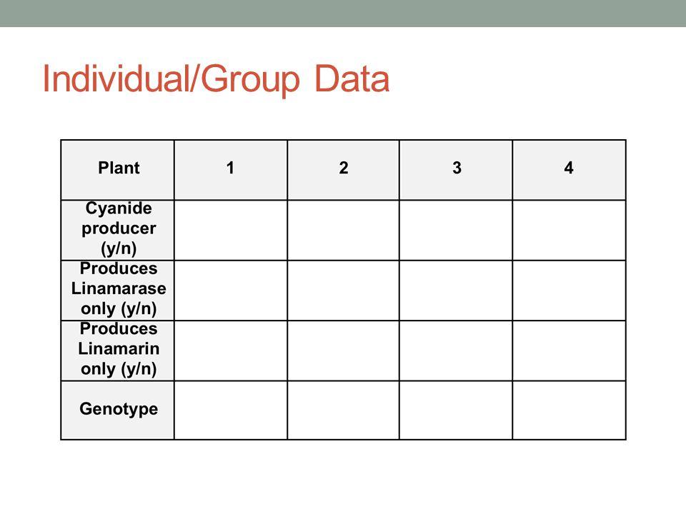 Individual/Group Data