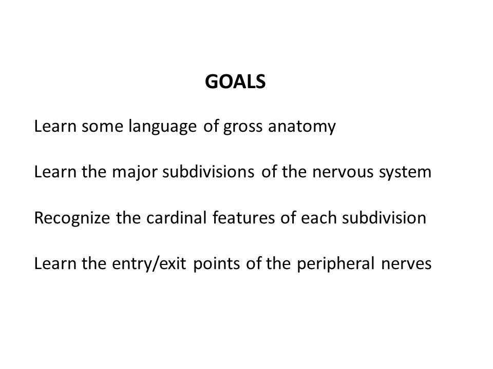 GOALS Learn some language of gross anatomy