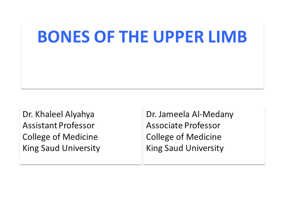 BONES OF THE UPPER LIMB Dr. Khaleel Alyahya Assistant Professor