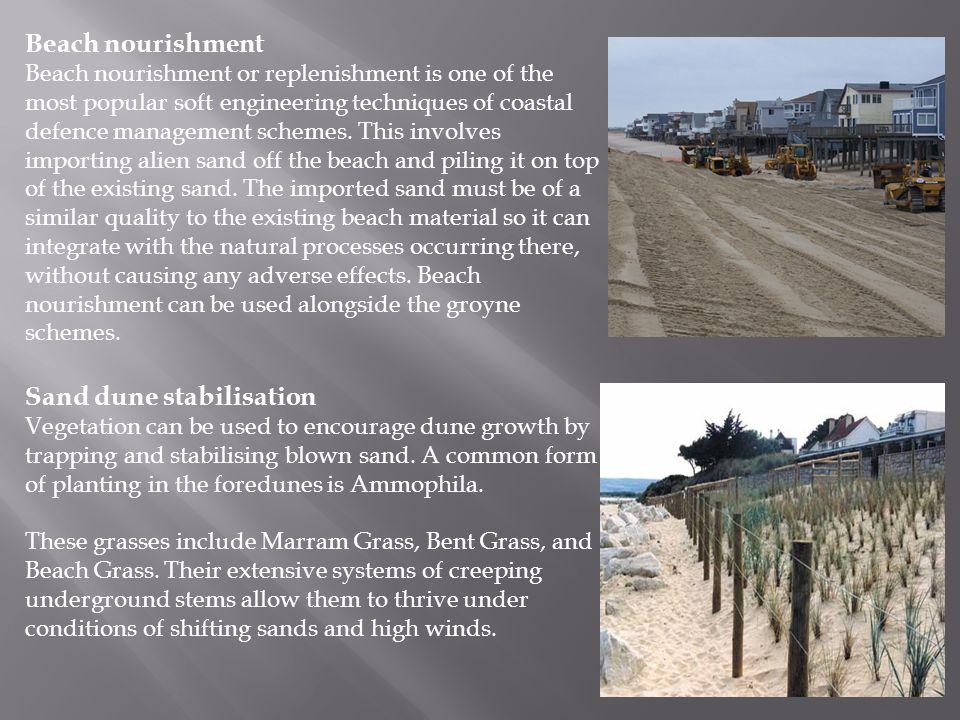 Sand dune stabilisation