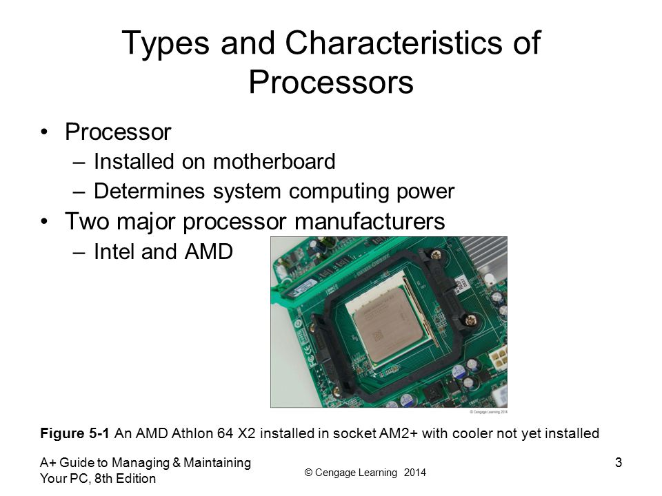 Types and Characteristics of Processors