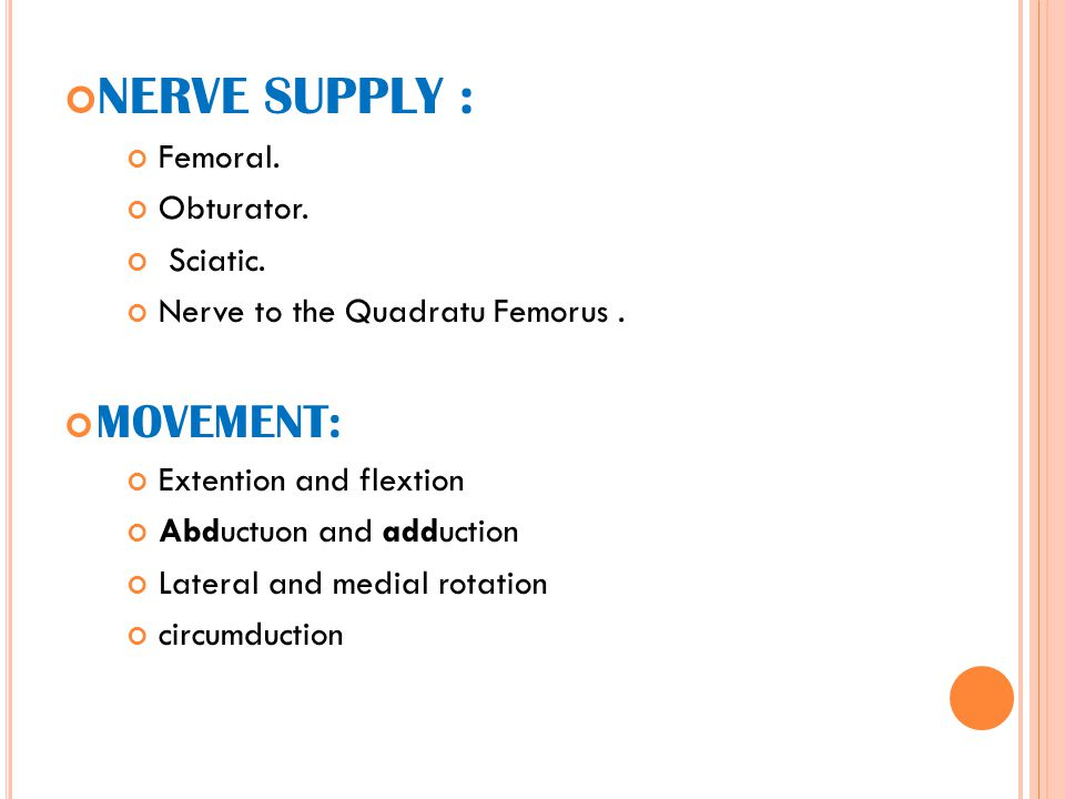 NERVE SUPPLY : MOVEMENT: Femoral. Obturator. Sciatic.
