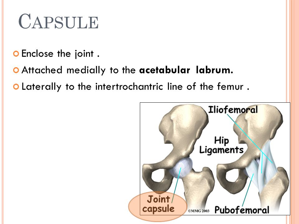 Capsule Enclose the joint .