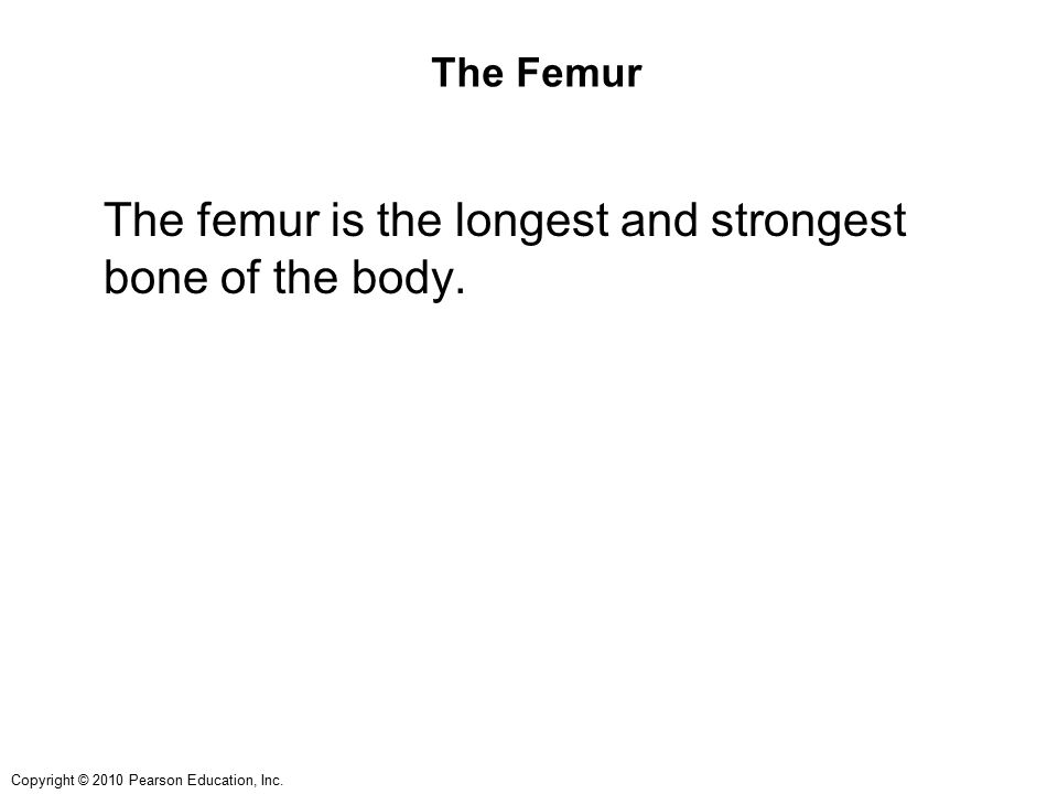 The femur is the longest and strongest bone of the body.
