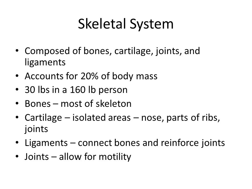 Skeletal System Composed of bones, cartilage, joints, and ligaments