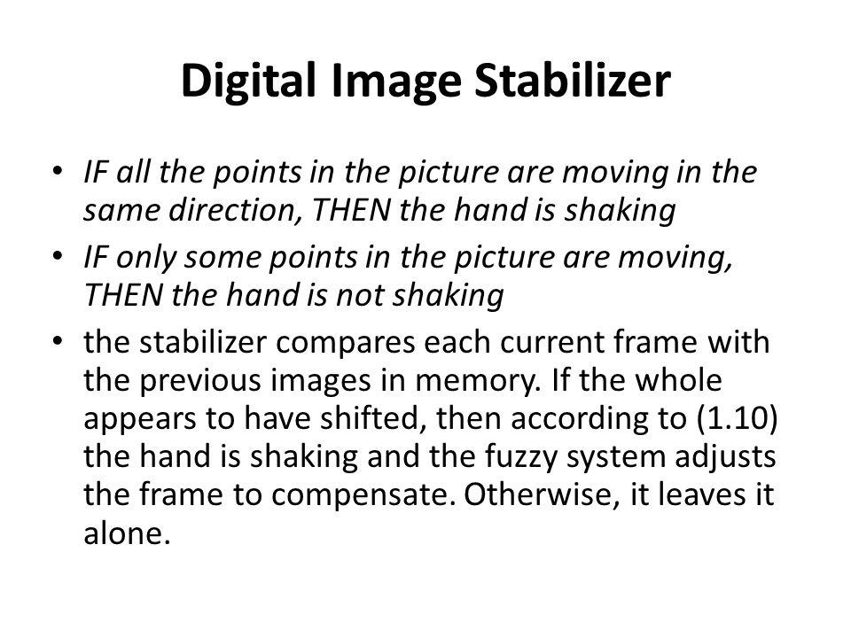 Digital Image Stabilizer