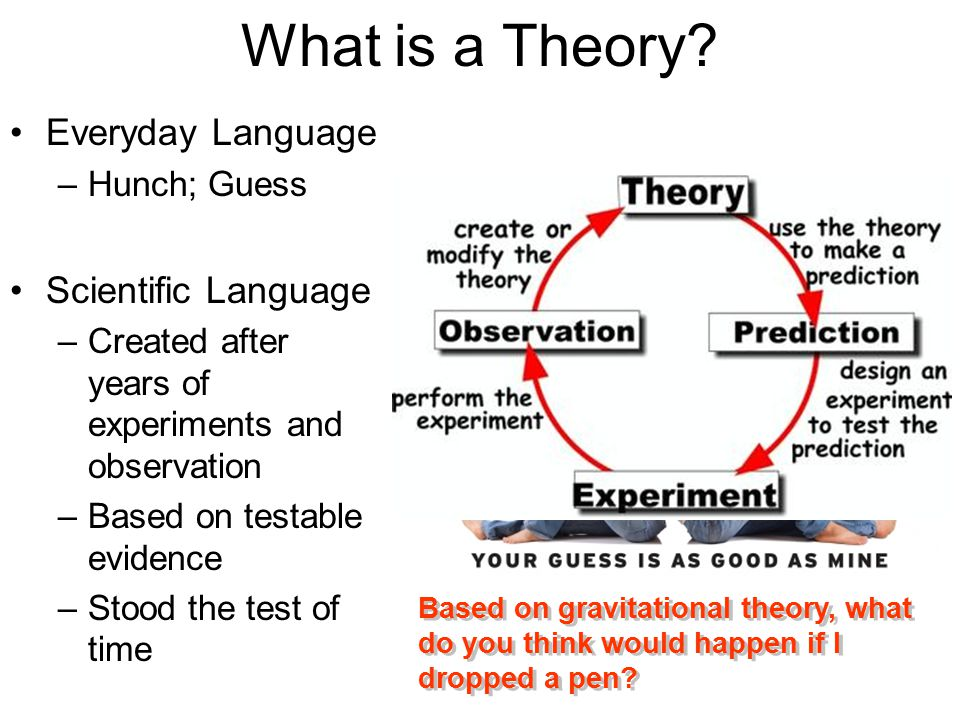 What is a Theory Everyday Language Scientific Language Hunch; Guess