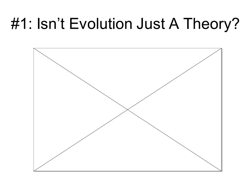 #1: Isn't Evolution Just A Theory