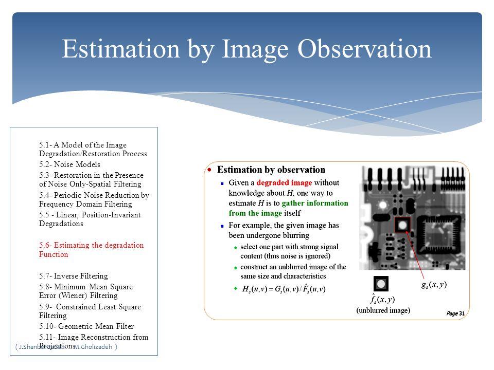 Estimation by Image Observation