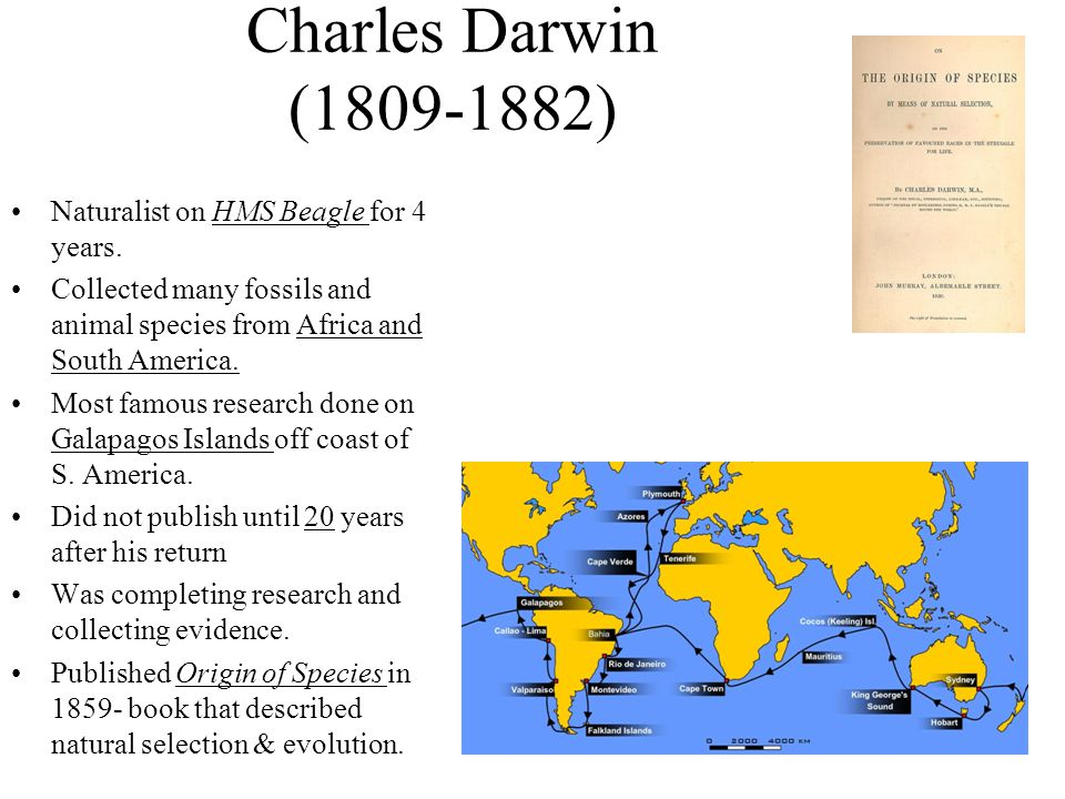 Charles Darwin (1809-1882) Naturalist on HMS Beagle for 4 years.