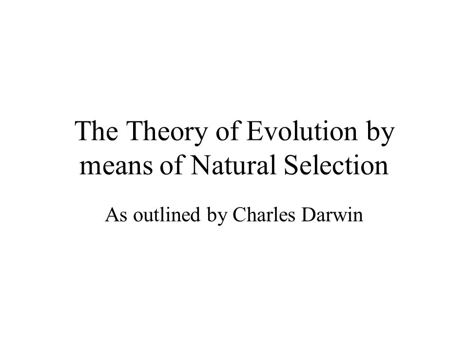 The Theory of Evolution by means of Natural Selection