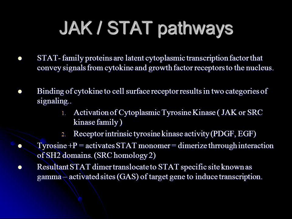 JAK / STAT pathways