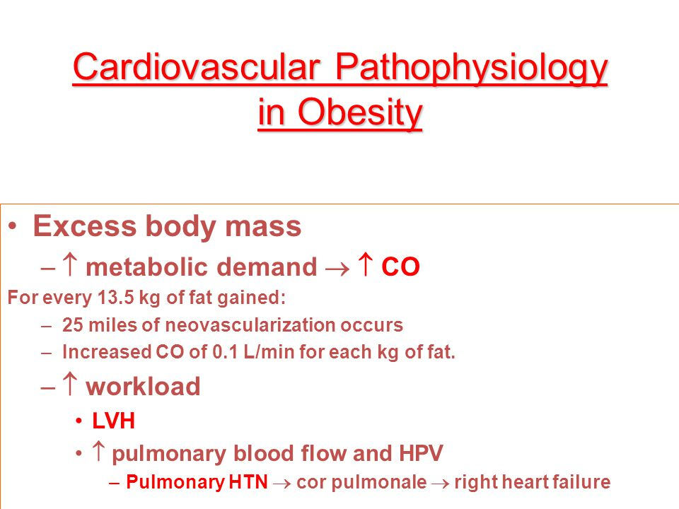 Cardiovascular Pathophysiology in Obesity