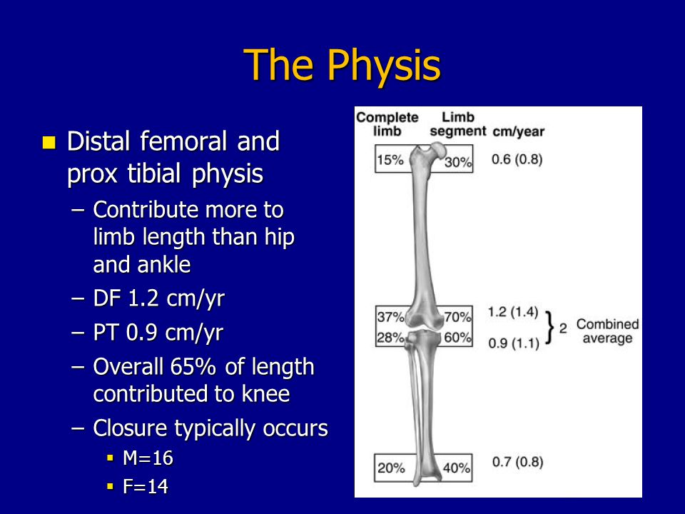 The Physis Distal femoral and prox tibial physis