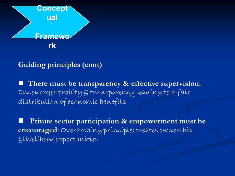Conceptual Framework. Guiding principles (cont)
