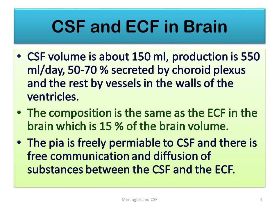 CSF and ECF in Brain