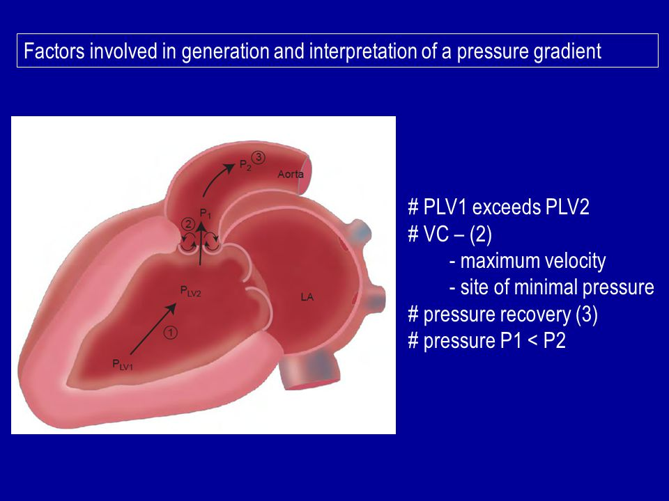 Factors involved in generation and interpretation of a pressure gradient