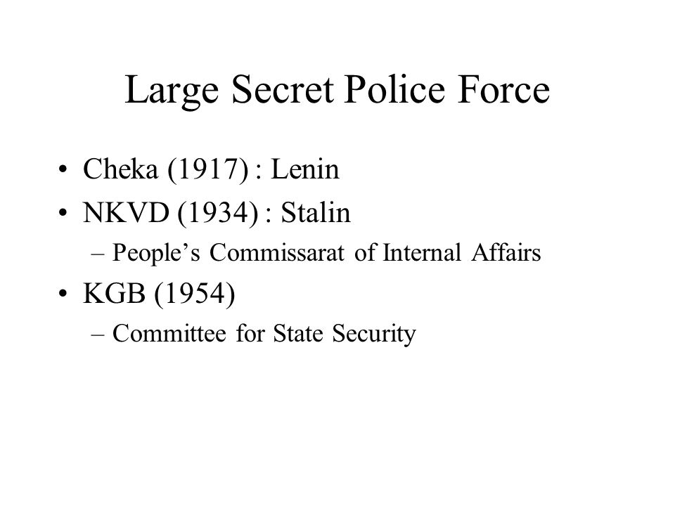 Large Secret Police Force