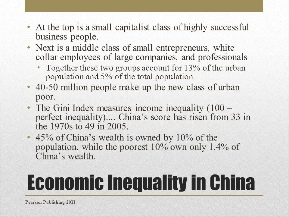 Economic Inequality in China