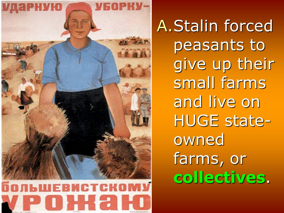 Stalin forced peasants to give up their small farms and live on HUGE state-owned farms, or collectives.