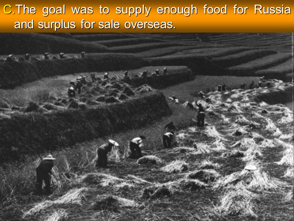 The goal was to supply enough food for Russia and surplus for sale overseas.