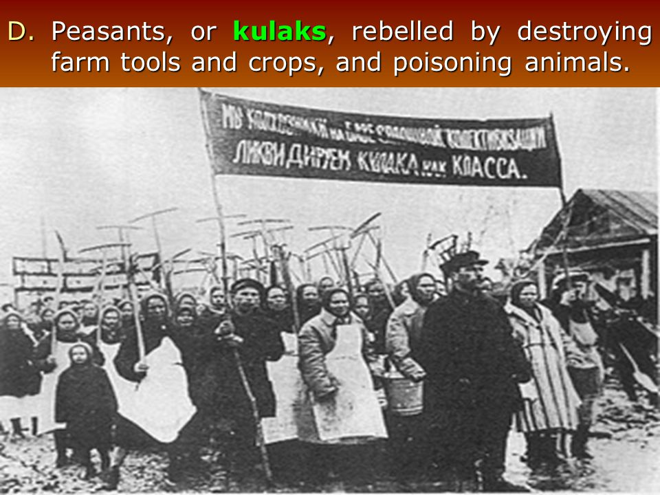 Peasants, or kulaks, rebelled by destroying farm tools and crops, and poisoning animals.